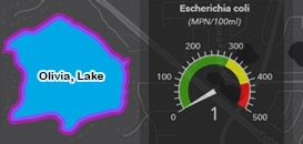 Water Quality Dashboard